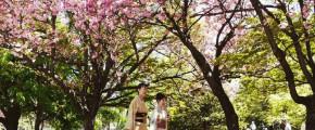 7DAYS SPRING IN HOKKAIDO