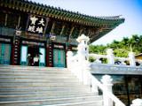 5 Days Korea & Japan Getaway