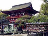 8D6N Love in Kyushu | Tour Package 2017