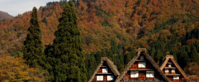 7D5N Central Japan + Gassho Village (Autumn)