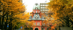7D5N Hokkaido Love Story ~Autumn Season~