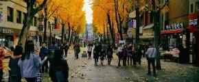 8D7N Glamorous Busan & Mt Naejangsan Autumn