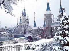 8D Korea Winter Wonderland