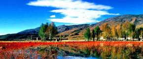 8D Kunming/Dali/Li Jiang/Shangri-la Tour by Coach