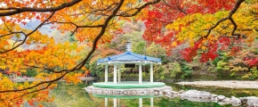 8D 6N Southern Beauty of Korea