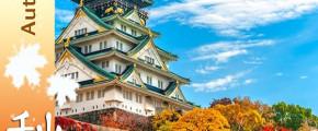 Best Of Kyushu, Shikoku & Osaka 9D7N