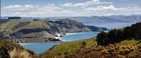 Princess Cruise: 8N Australia & New Zealand (Ruby Princess )