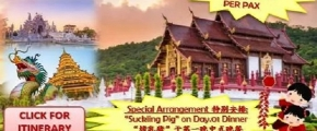 5D4N Chiangmai + Chiangrai CNY'19 Happiness Tour