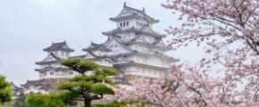 7D6N Osaka & Surrounds ~Sakura~ (02 Apr)