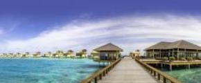 4D3N Angsana Velavaru Maldives