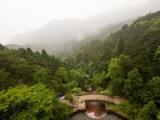 8D Jiangxi Mt. Sanqing/ Mt. Lu/ Jingdezhen/ Wuyuan + Shanghai