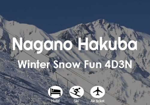 Nagano Hakuba Winter Snow Fun
