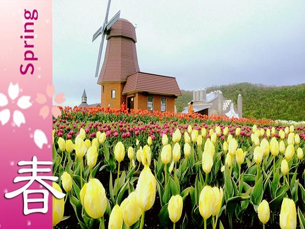 Flower Story @ Hokkaido 8D5N