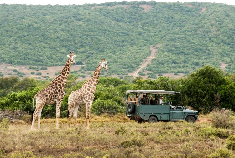 10D7N HIGHLIGHTS OF SOUTH AFRICA
