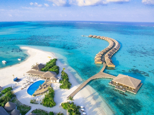4D3N Cocoon Maldives Promotions