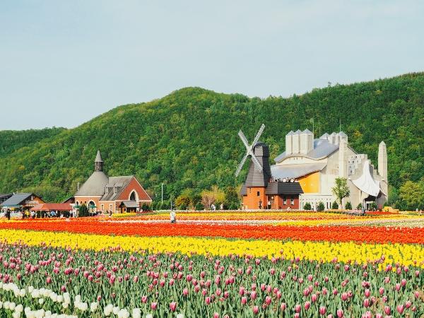 8D5N Floral Story @ Hokkaido