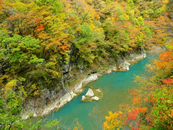 9D6N Autumn Discovery in North Japan