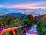 Dream Cruises 3N Isles of Malaysia