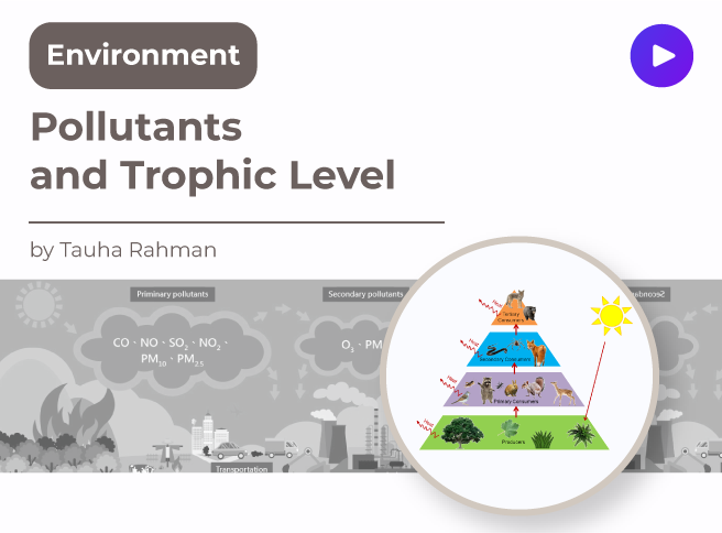 Pollutants and Trophic Level