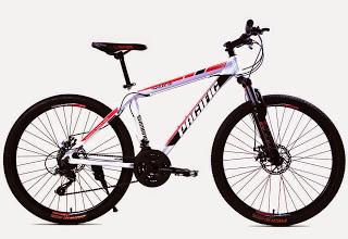 Sepeda Gunung Pacific Tranzline 300 | Pondok Sepeda - Sewa menyewa jadi lebih mudah di Spotsewa