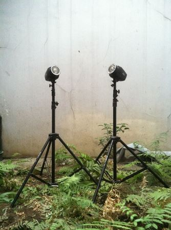 Lighting Tronic Jumbo Kit 100ws | Studio Lighting Tronic - Sewa menyewa jadi lebih mudah di Spotsewa