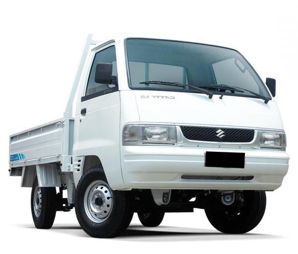 Mitsubishi Carry | DLB Express