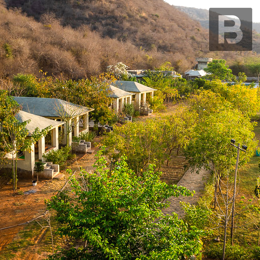 Beyond Stay Jungle Camp, Sariska