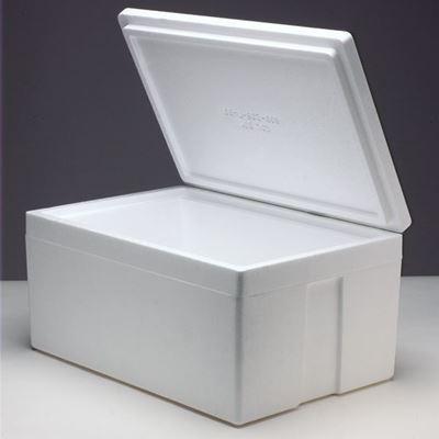 COOLERS (styrofoam)