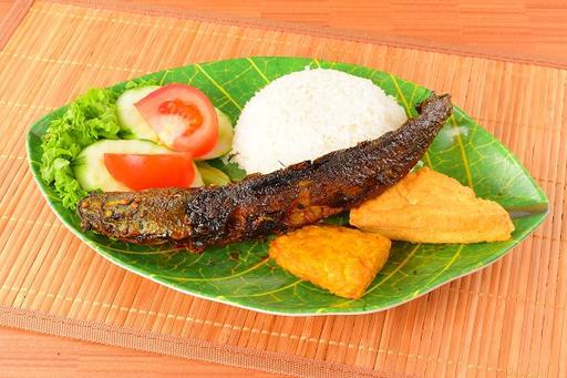 Catfish (Ikan Lele) + Rice