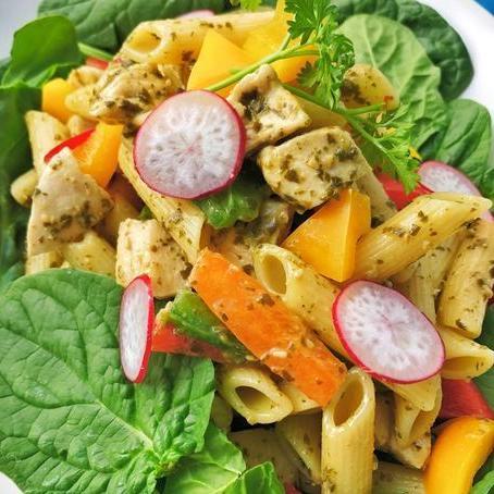 Chicken Pesto Penne (Cals:495.2 P:65.8g C:38.2g F:8.8g)