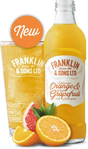Franklin and Sons Soda-Orange and Grapefruit