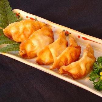 Gyoza (饺子)