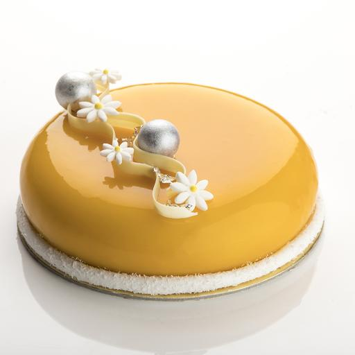 Mango and Passion Chocolate Mousse Cake