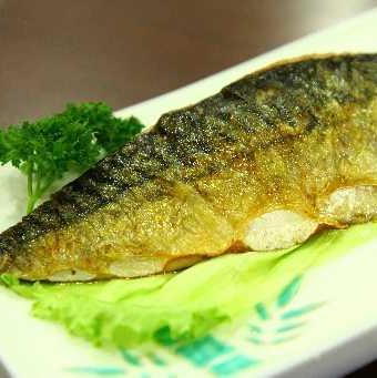 Saba (鲭鱼)