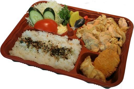 Salmon Toji Bento