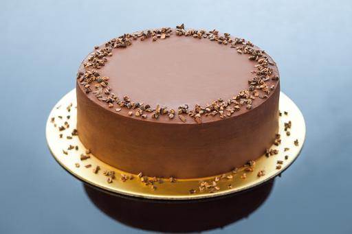 Zainasaurus Chocolate Cake