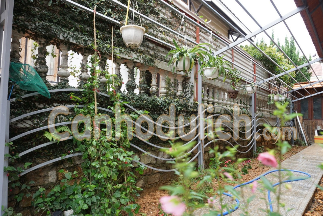 Viettrip Villa Đà Lạt THV 7 Yersin
