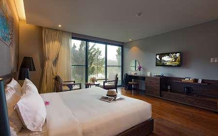 Luxury (Phòng trong villa)