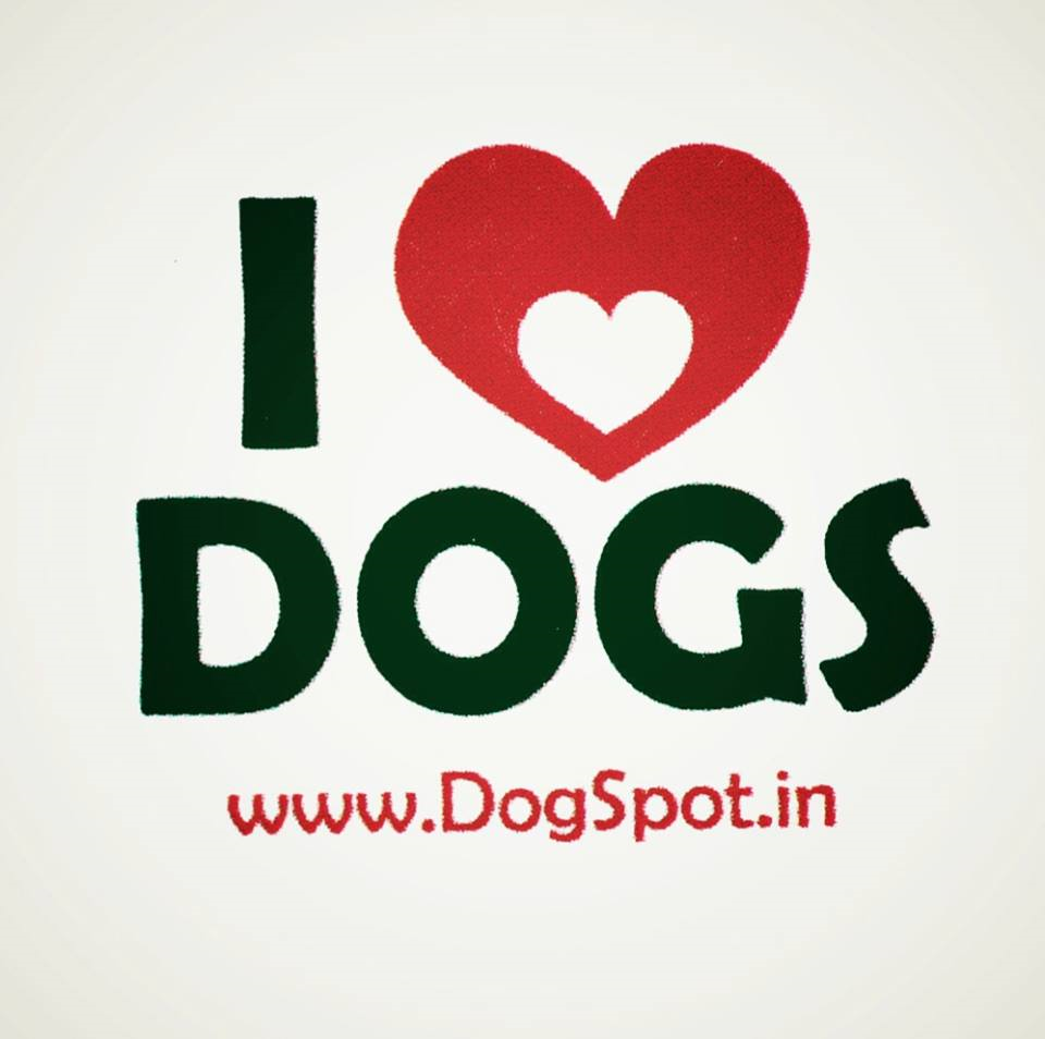 Up to 60% Discount On Dog's Collars And Leashes
