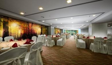 Ballroom-at-Sunway-Hotel-Georgetown-Penang149259652958f7373101bde6.77721146.jpg