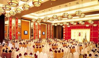 Venuepoint profile venue details junglespirit Images