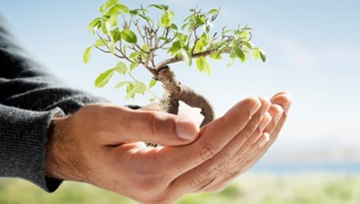 Is your Startup Socially Responsible? | NEN