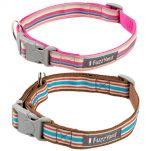 fuzzyard-stripes-dog-collars.jpg