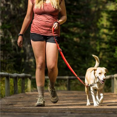 thumb_Ruffwear-Slackline-Leash-Walking_adaptiveResize_390_390.jpg