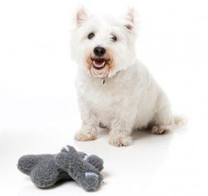 thumb_FuzzYard-Grey-Dog-Bones-300x283_adaptiveResize_390_390.jpg