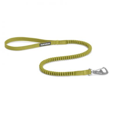 thumb_Ruffwear-Ridgeline-Leash-ForestGreen_adaptiveResize_390_390.jpg
