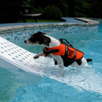 thumb_skamper-ramp-dog-pool-ramp-left_adaptiveResize_390_390.jpg