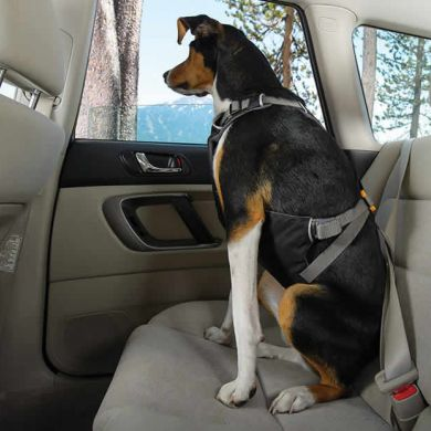 thumb_ruffwear-load-up-harness-side_adaptiveResize_390_390.jpg