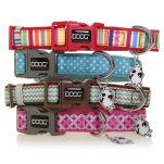 doog-neoprene-dog-collars.jpg