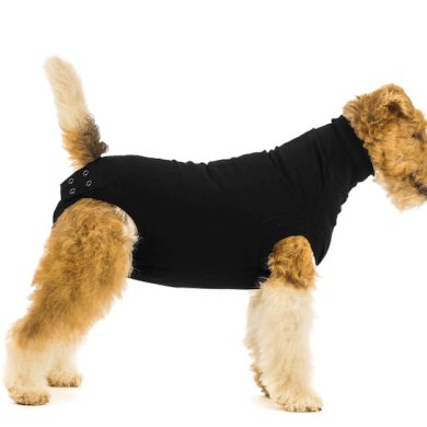 thumb_Recovery_Suit_Dog_Black_1_adaptiveResize_390_390.png